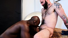 Aroused chap can't stop nailing the ass of tasty, black lover