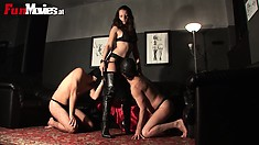 Mistress Larissa gets her heavenly pussy worshiped by slaves