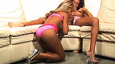 Lovely caramel babes hook up on the couch and embark on a wild lesbian adventure
