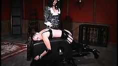 Morgan Monroe and Kim Lee head to the dungeon for lesbian torture