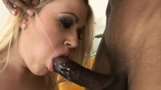 Blonde Brandy Dallas gets a big black pecker to suck and bang her twat