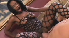 Fishnet clad Lady Armani eats Sledge and gets a big dick humping