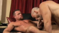 Horny stud worships his friend's big cock and then takes it up his ass