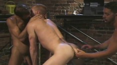 Two studs have their play toy on the table and fist his asshole