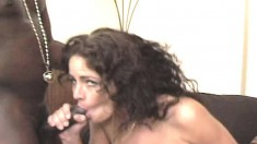 Nasty brunette Amber has a gang of black bulls pounding all her holes