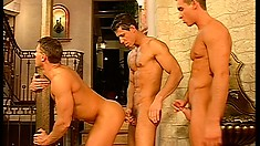 Tight-bodied stallions suck each other's cocks in a threesome