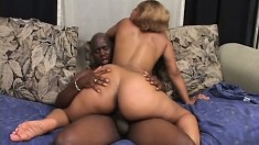 Lustful caramel girl with big natural boobs reveals her passion for black cock