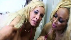 Huge breasted blonde whores sucking and stroking a big cock to orgasm