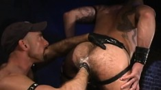 Hairy Guy Is In Heaven When His Gay Lover's Fist Deeply Drills His Ass